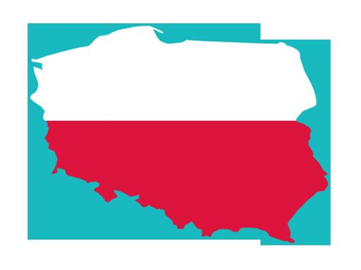 Polish SEO